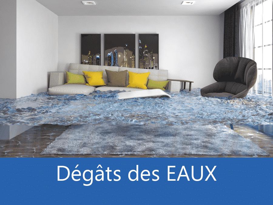 expertise humidité Saint-Denis, expert humidité 93, cause moisissure Épinay-sur-Seine, solutions humidité Le Blanc-Mesnil,
